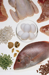 images of various protein-rich foods such as fish, eggs, chicken, red meat and beans